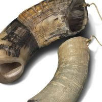 Clapper of cow horn